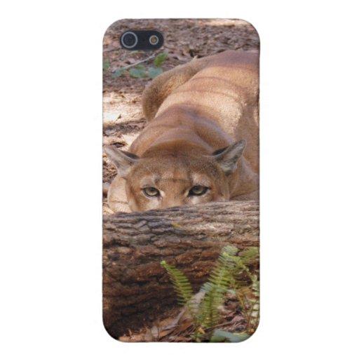 Puma i iPhone 5 cárcasa