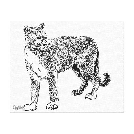 Puma Impresión En Lienzo Estirada