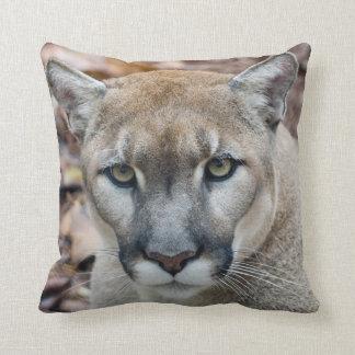 Puma, león de montaña, pantera de la Florida, puma Cojin