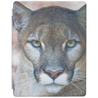 Puma, león de montaña, pantera de la Florida, puma Cubierta De iPad