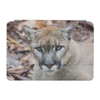Puma, león de montaña, pantera de la Florida, puma Cover De iPad Mini