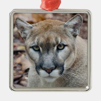 Puma león de montaña pantera de la Florida puma Ornamento De Reyes Magos