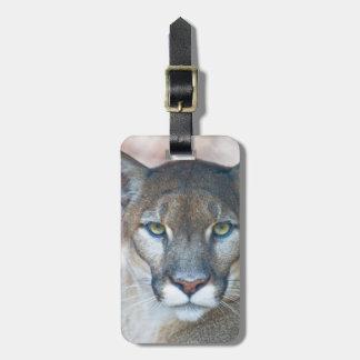 Puma, león de montaña, pantera de la Florida, puma Etiqueta De Equipaje