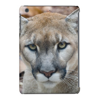 Puma, león de montaña, pantera de la Florida, puma Funda De iPad Mini