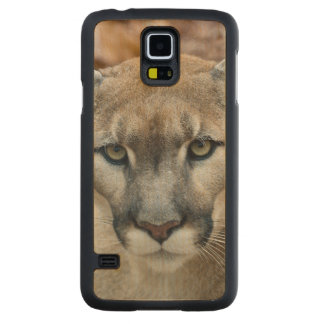 Puma, león de montaña, pantera de la Florida, puma Funda De Galaxy S5 Slim Arce