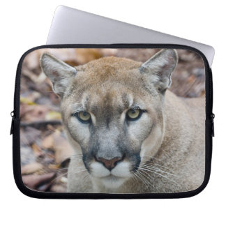 Puma, león de montaña, pantera de la Florida, puma Mangas Portátiles