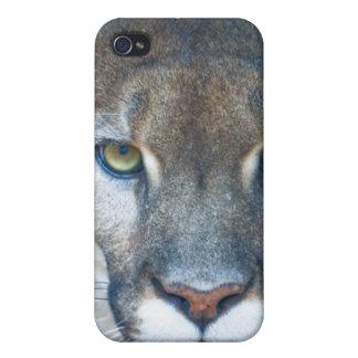 Puma, león de montaña, pantera de la Florida, puma iPhone 4/4S Carcasas