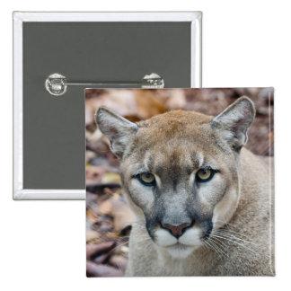 Puma, león de montaña, pantera de la Florida, puma Pin Cuadrada 5 Cm