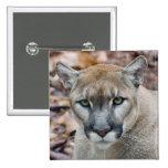 Puma, león de montaña, pantera de la Florida, puma Pin Cuadrado