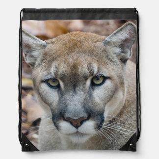 Puma, león de montaña, pantera de la Florida, puma Mochila
