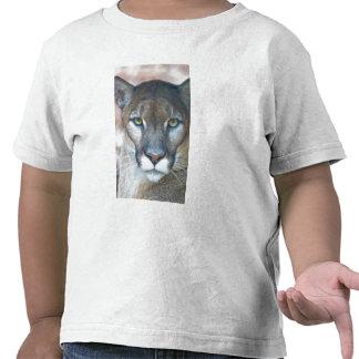 Puma, león de montaña, pantera de la Florida, puma Camiseta