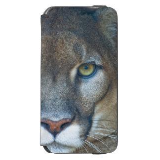 Puma, león de montaña, pantera de la Florida, puma Funda Cartera Para iPhone 6 Watson