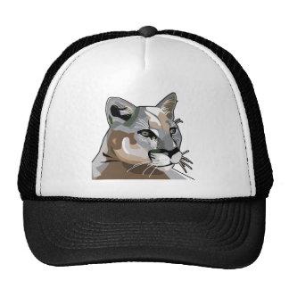Puma, león de montaña, puma gorra