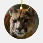Puma Ornament