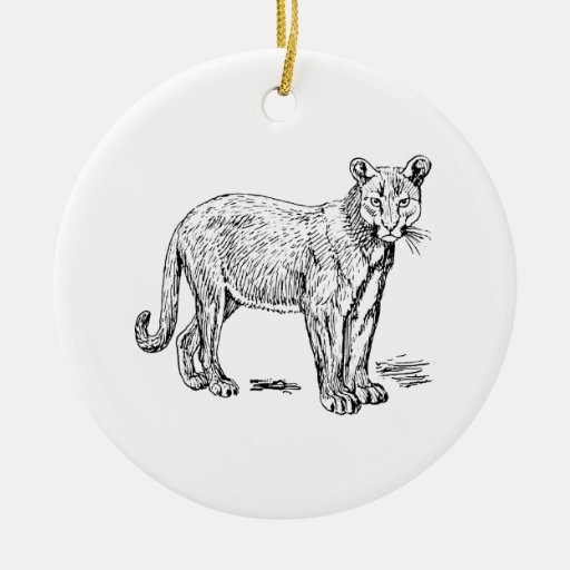 Puma Ornamento De Reyes Magos