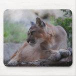 Puma pensativo tapetes de raton