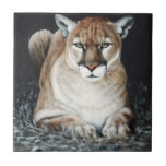 Puma que se agacha azulejo