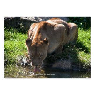 Puma Plantilla De Tarjeta Personal
