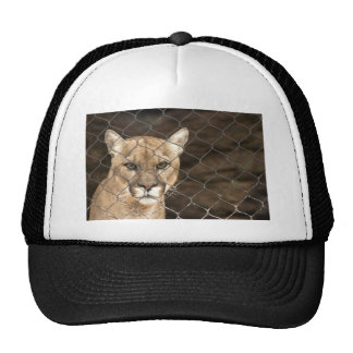 Puma...with Attitude! Trucker Hat