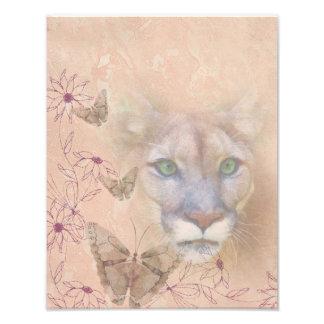 Puma y mariposas impresión fotográfica