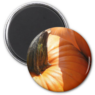 Pumkin and Pal Magnet