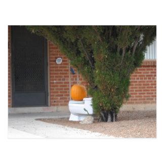 pumkin sitting on a toilet postcard