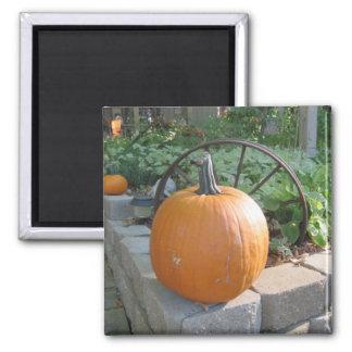 Pumpkin 2 Inch Square Magnet