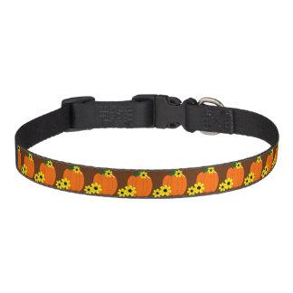 Pumpkin and Black-eyed Susans Pet Collar