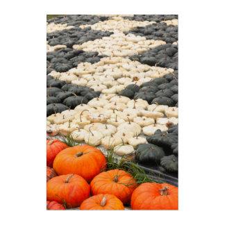 Pumpkin and squash pattern, Germany Acrylic Print