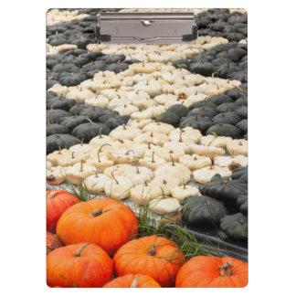 Pumpkin and squash pattern, Germany Clipboard