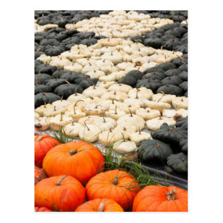 Pumpkin and squash pattern, Germany Postcard