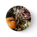 Pumpkin Autumn button