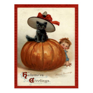 Pumpkin Black Cat Boy Frances Brundage Postcard