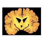 Pumpkin Brain Postcards