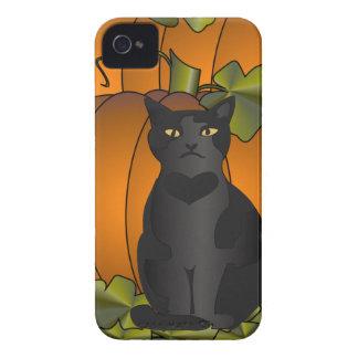 Pumpkin Cat Blackberry Cases