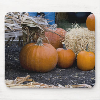 Pumpkin Country Farm Scene Mouse Pad