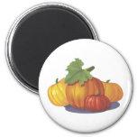 Pumpkin Decoration 2 Inch Round Magnet