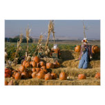 Pumpkin display with hay bales and scarecrows poster