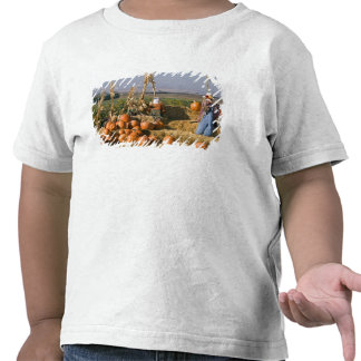Pumpkin display with hay bales and scarecrows t shirt