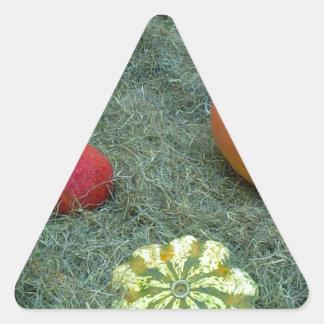 pumpkin fall autumn fruits sticker
