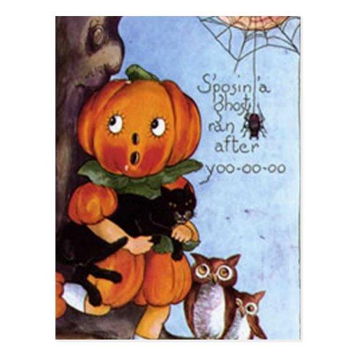 Pumpkin Girl With Cat Postcards
