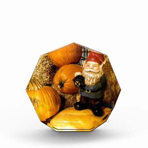 Pumpkin Gnome I Acrylic Award