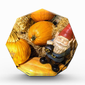 Pumpkin Gnome II Award