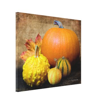 Beach Themed Pumpkin Gourds Still Life Canvas Print