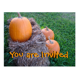 pumpkin harvest-customize any occasion postcard