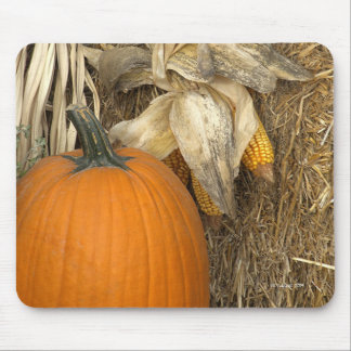 Pumpkin Harvest Time Mouse Pad