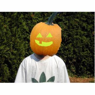 Pumpkin head photo sculpture