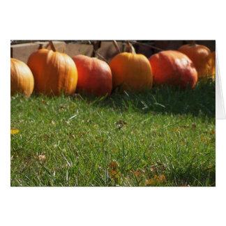 Pumpkin In A Row, Thanksgiving Card