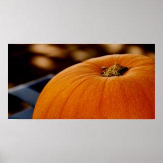 Pumpkin in Rectangle Poster