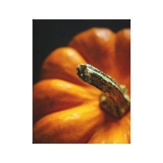 Pumpkin in the Fall Canvas Print